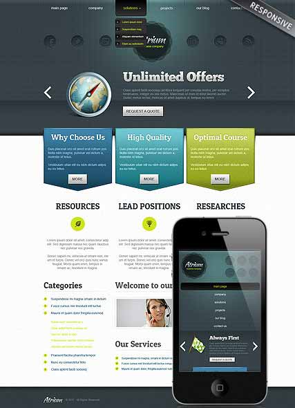 Website template 300111484