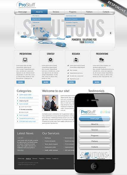 Website template 300111490
