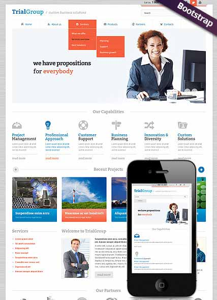 Website template 300111595