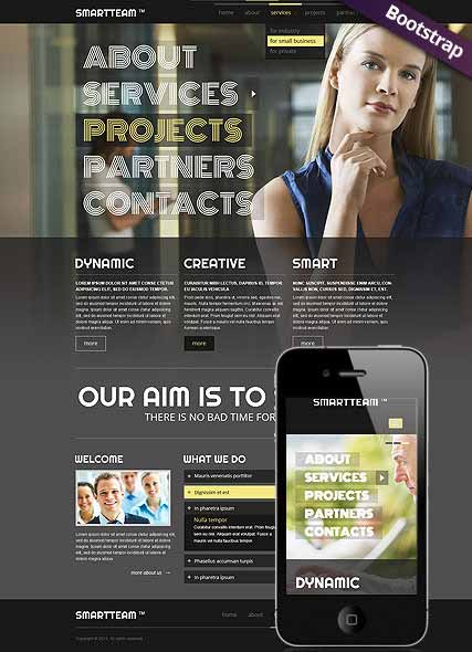 Website template 300111701