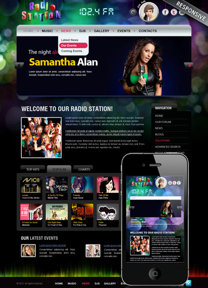 Website template 300111855