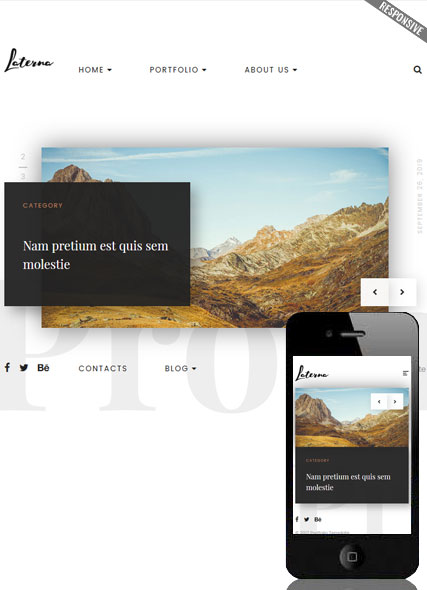 Website template 300111927